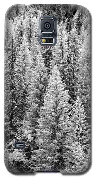 Standing Tall In The French Alps Galaxy S5 Case