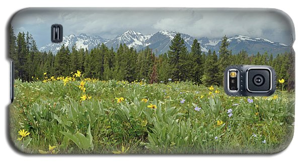 Stormy Tetons And Flowers Galaxy S5 Case