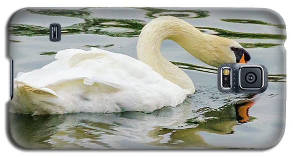 Strasbourg Swan Galaxy S5 Case