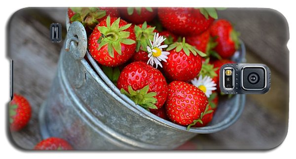 Strawberries And Daisies Galaxy S5 Case