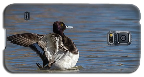 Stretching Scaup Galaxy S5 Case