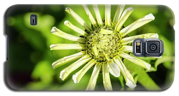 Striking In Green Galaxy S5 Case