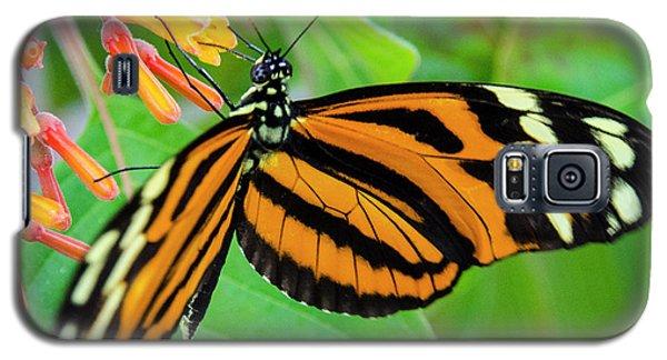 Striking In Orange And Black Galaxy S5 Case