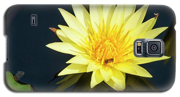 Stunning In Yellow Galaxy S5 Case