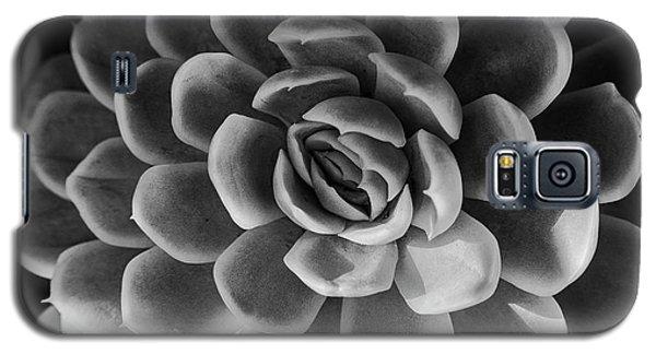 Succulent - Bw - 2 Galaxy S5 Case