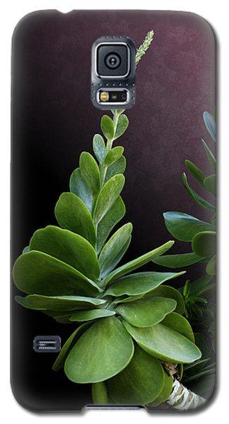 Succulent Spear Galaxy S5 Case