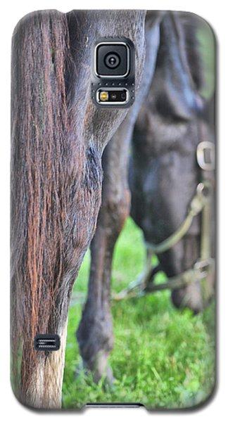 Summer Views Galaxy S5 Case
