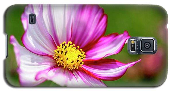 Sunny Day Galaxy S5 Case