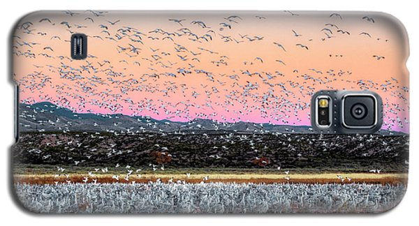Sunrise At The Crane Pool Galaxy S5 Case