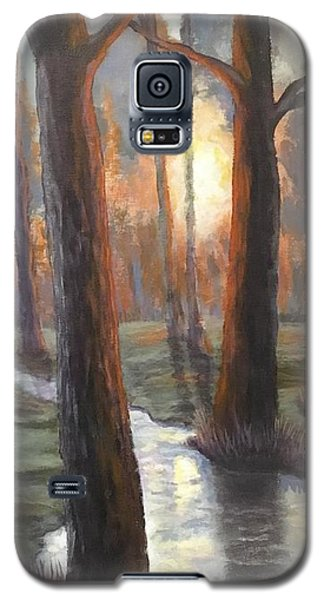 Sunrise Creek Galaxy S5 Case
