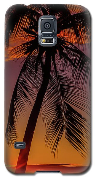 Sunset At The Palm Galaxy S5 Case