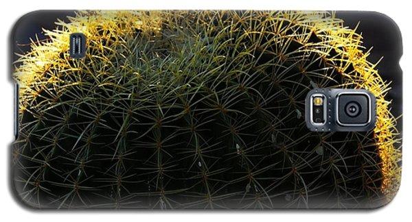 Sunset Cactus Galaxy S5 Case