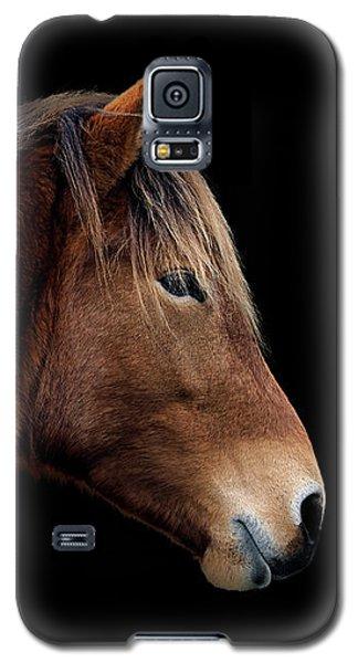 Susi Sole Portrait On Assateague Island Galaxy S5 Case
