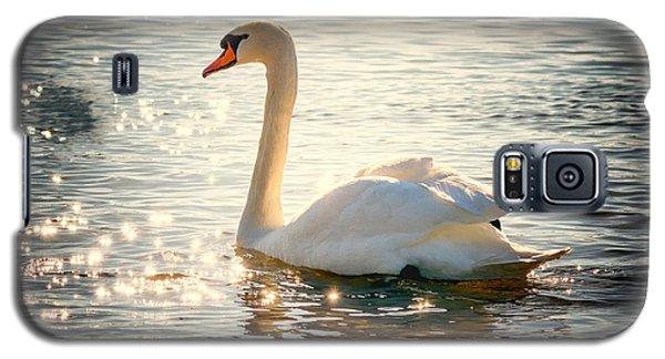 Swan On Golden Waters Galaxy S5 Case