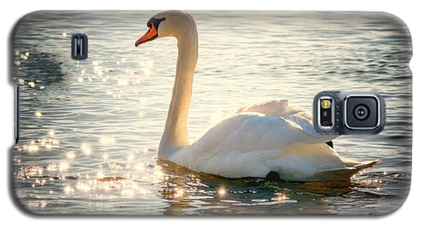 Swan On Golden Waters Galaxy S5 Case