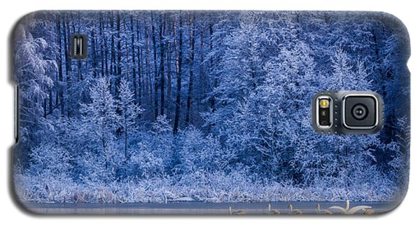 Icy Galaxy S5 Case - Swans At Sunrise On Winter Lake by Shaiith