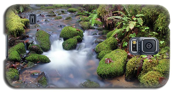 Galaxy S5 Case featuring the photograph Sweet Sounds At The Creek by Ben Upham