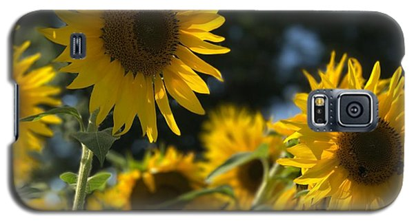 Sweet Sunflowers Galaxy S5 Case