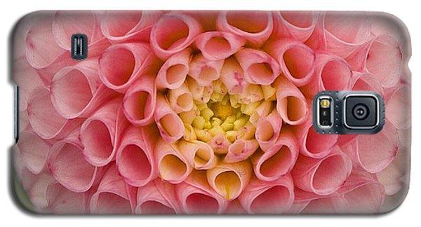 Symmetrical Dahlia Galaxy S5 Case