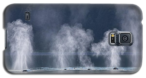 Synchronized Swimming Humpback Whales Alaska Galaxy S5 Case