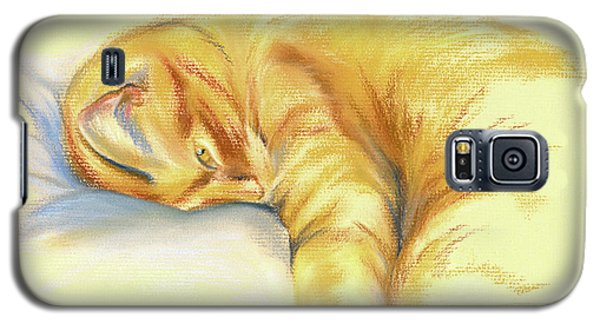 Tabby Cat Relaxed Pose Galaxy S5 Case
