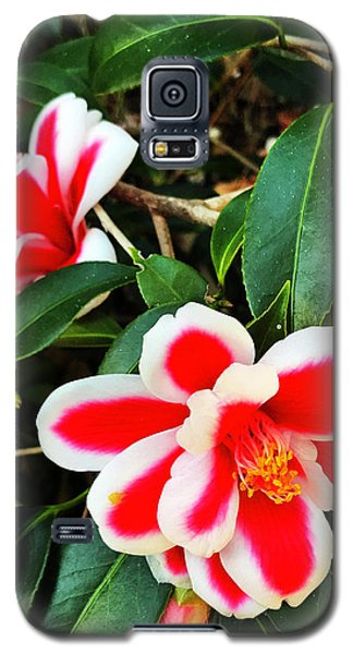 Tama Peacock Twins Galaxy S5 Case