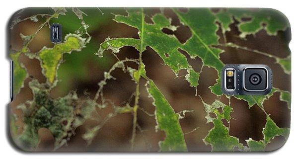 Tasty Tree Galaxy S5 Case