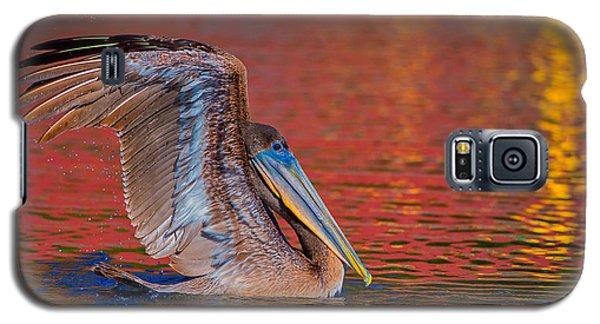 Tchefuncte Pelican Galaxy S5 Case