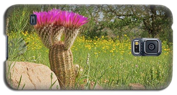 Texas Lace Galaxy S5 Case