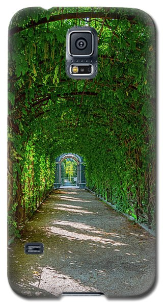 The Alley Of The Ivy Galaxy S5 Case