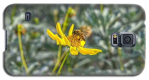 The Bee The Flower Galaxy S5 Case
