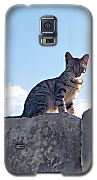 The Cat Galaxy S5 Case