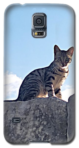 The Cat Galaxy S5 Case