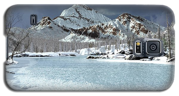 The Courtship Of Ice Galaxy S5 Case