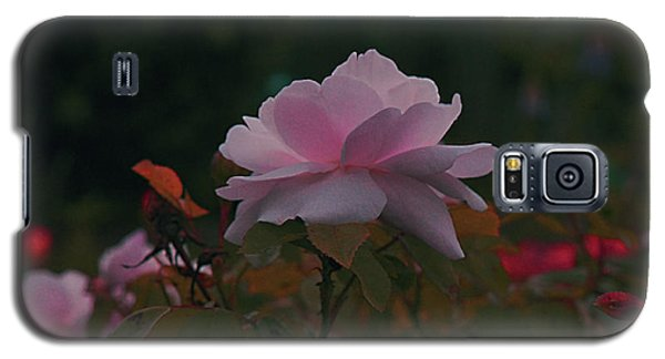 The Glowing Rose Galaxy S5 Case