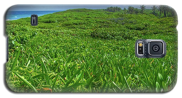 The Green Island Galaxy S5 Case