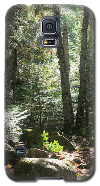 The Living Forest Galaxy S5 Case