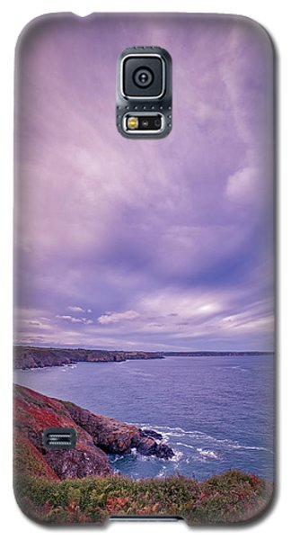 The Lizard Point Galaxy S5 Case