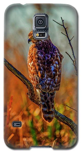 The Look Galaxy S5 Case