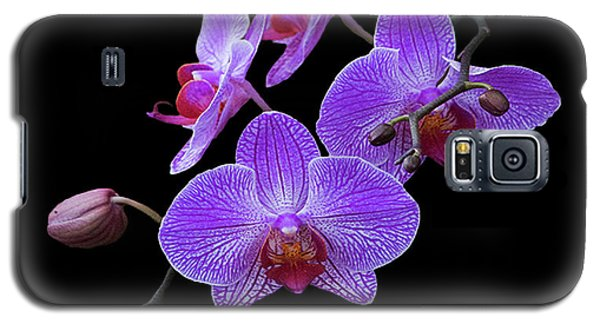 The Orchids Galaxy S5 Case