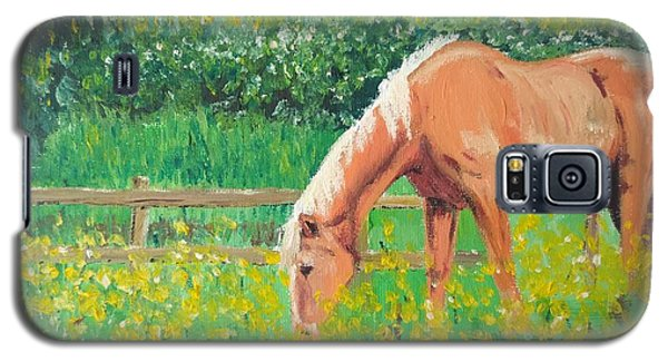 The Palomino And Buttercup Meadow Galaxy S5 Case