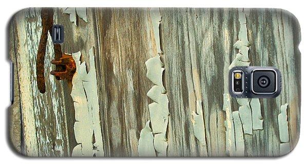The Peeling Wall Galaxy S5 Case