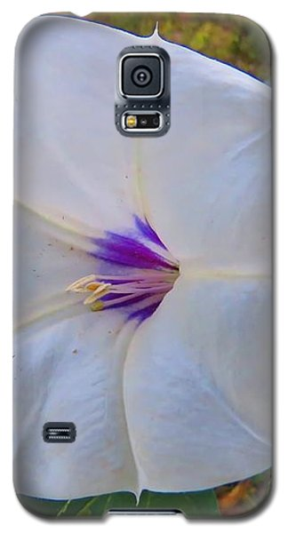 The Perfect Flower - Sacred Datura Galaxy S5 Case