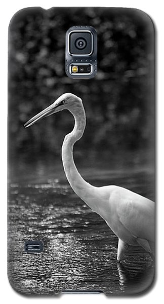 The Portrait Galaxy S5 Case