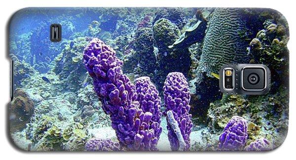 The Purple Sponge Galaxy S5 Case