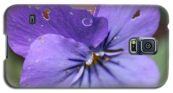 The Raggedy Viola Galaxy S5 Case