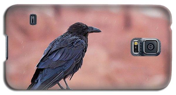 The Rainy Raven Galaxy S5 Case