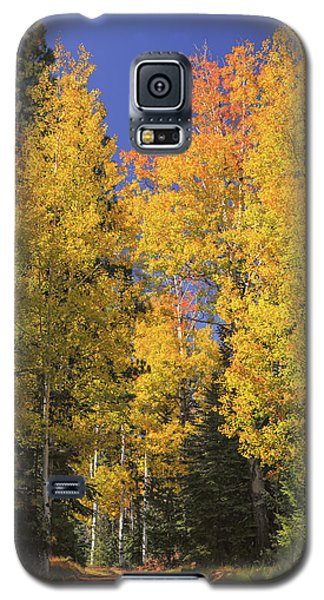The Road A Little Less Traveled Galaxy S5 Case