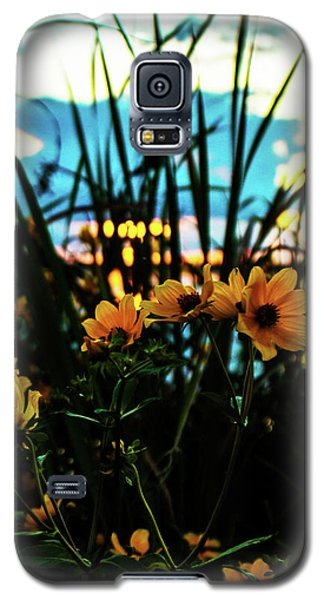 The Sunflower's Sunset Galaxy S5 Case