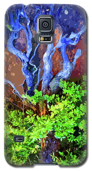 Galaxy S5 Case featuring the photograph The Tree Of Life by Ben Upham III
